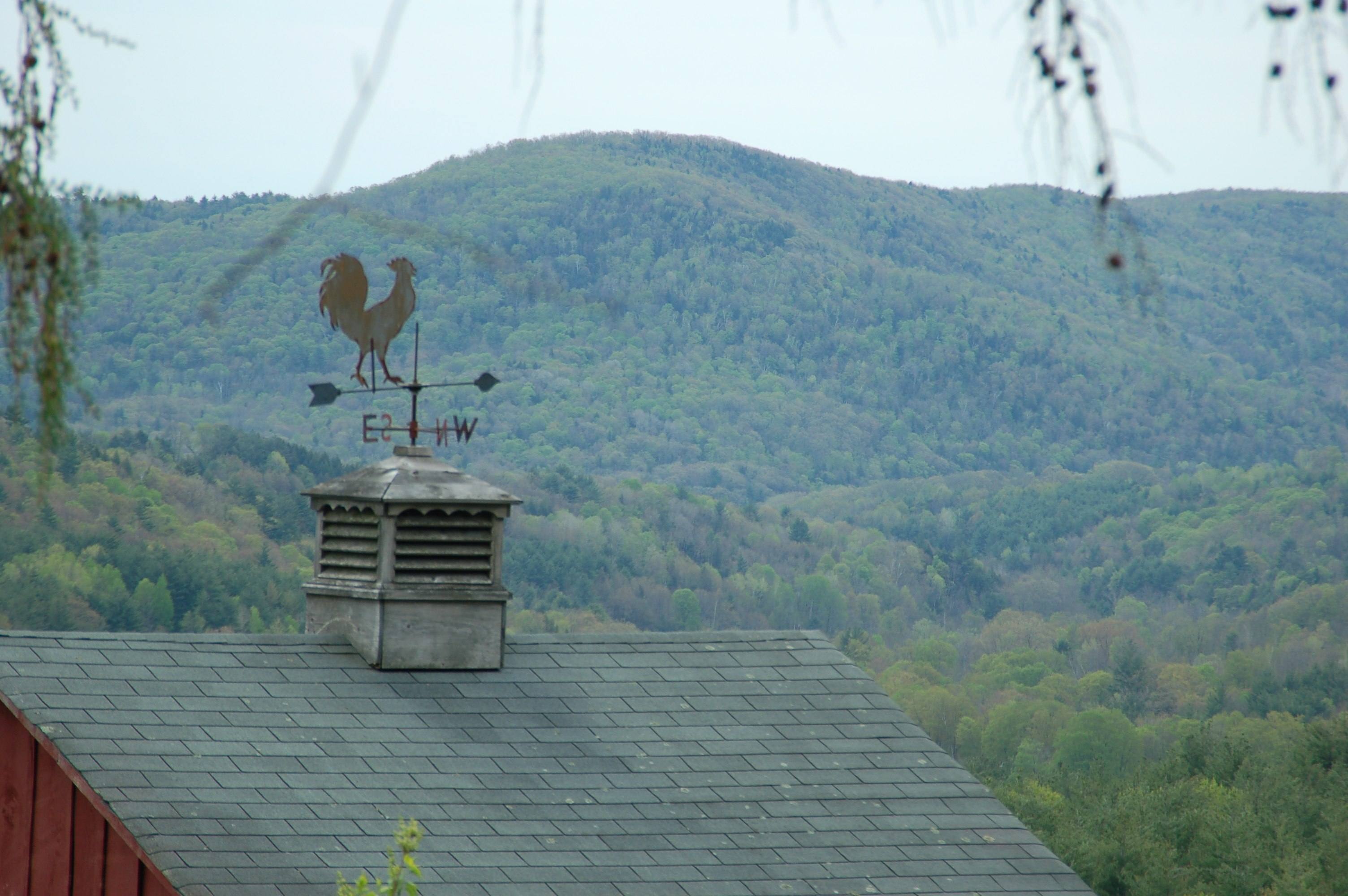 The mountains come alive in May.  Here's a weathervane I made to watch over the orchard.